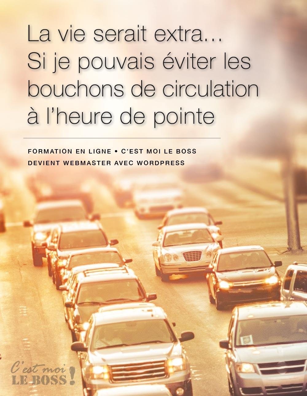 WP Tuto - traffic