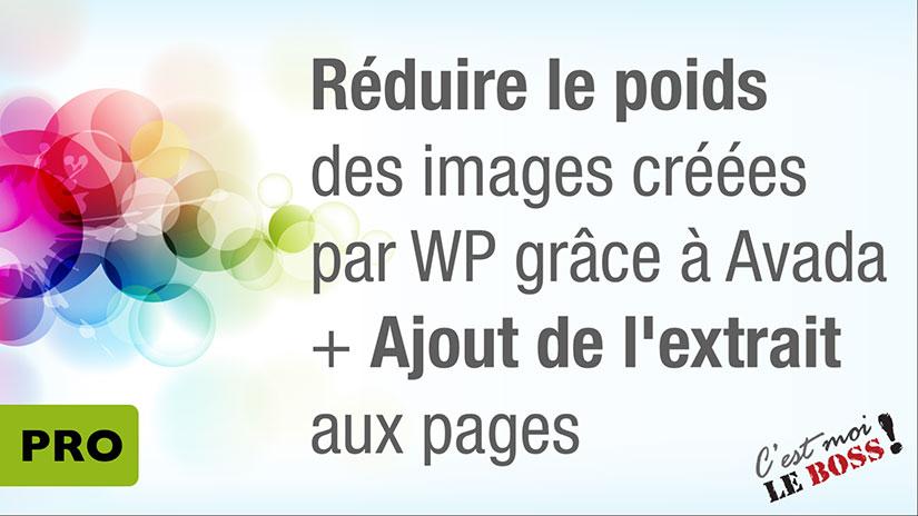 M10-V02 • PRO • Réduire le poids des images créées par WP + ajout de l'extrait aux pages