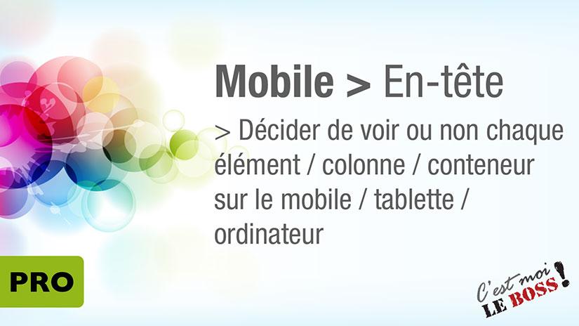 thème Avada - Menu pour Mobile
