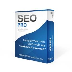 Formation en ligne SEO- PRO